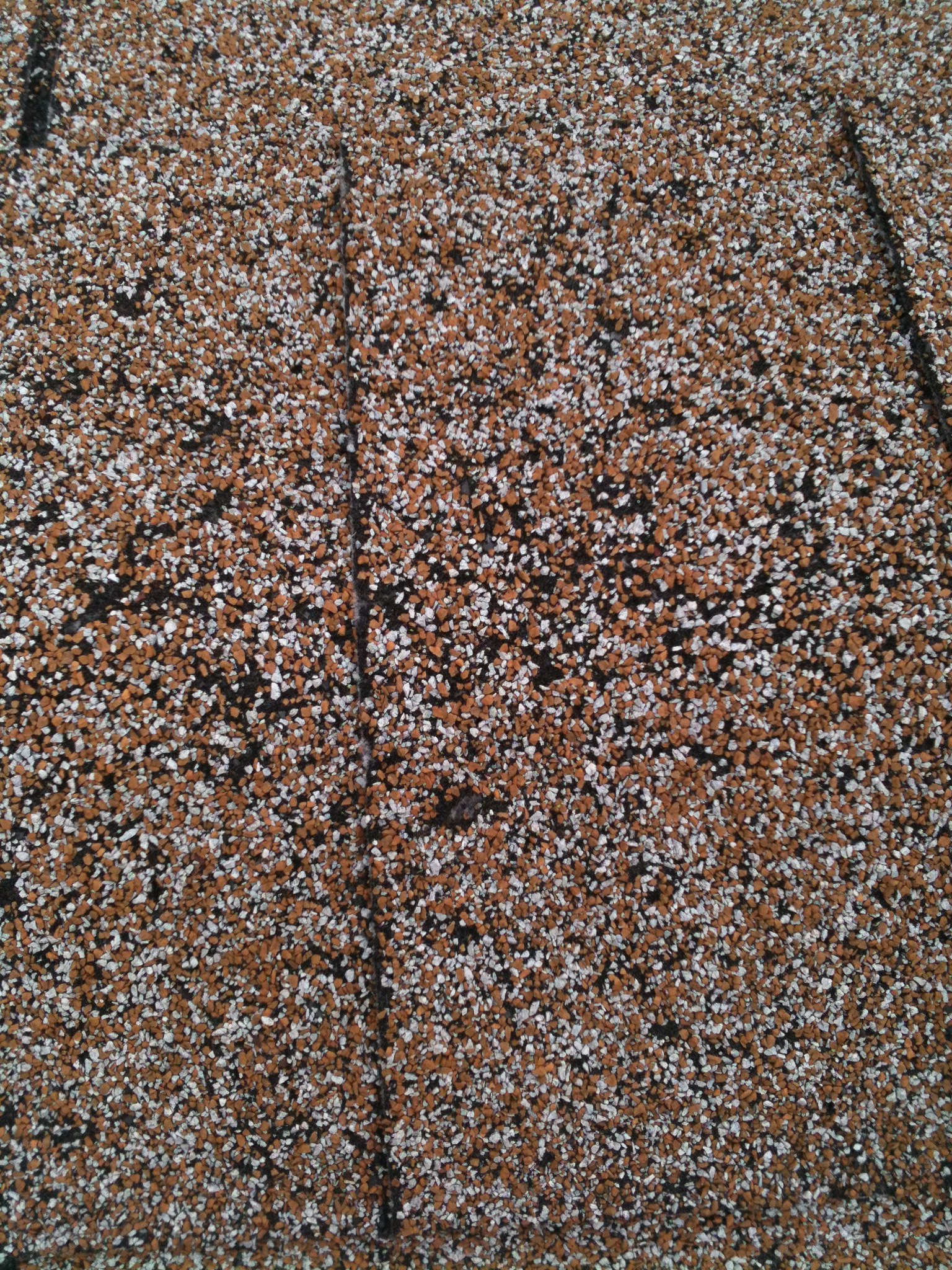 Damaged Roof Shingle Waco Texas Roofing