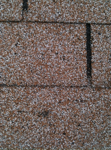 Roof Shingle Damage - Needs Replacement - Call Texas Built Roofing in Waco, Texas