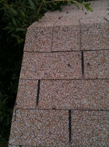 Roof Company Waco Texas