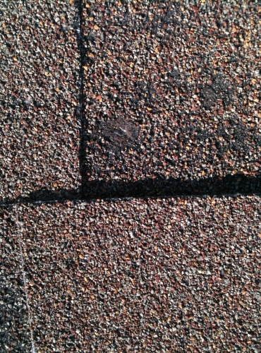 Texas Built Roofing Waco - Shingle Damage Replacement